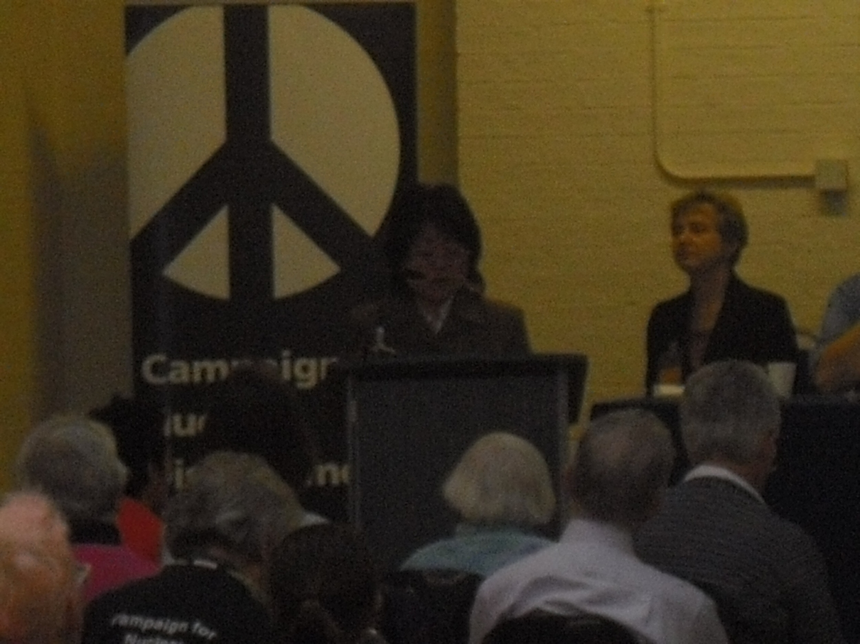 International Panel at the CND conference in London